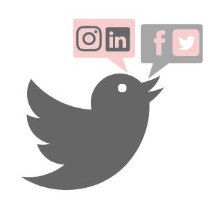 Virtuelle Assistentin - Social Media